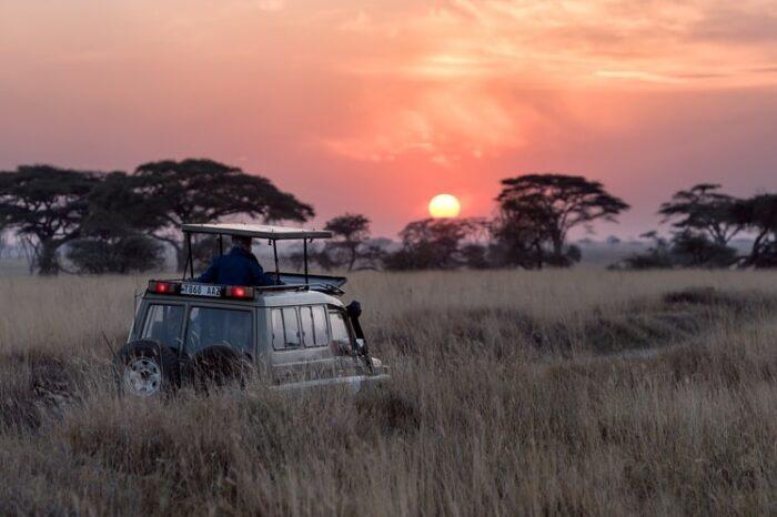 Танзания експрес – сафари и почивка в Занзибар