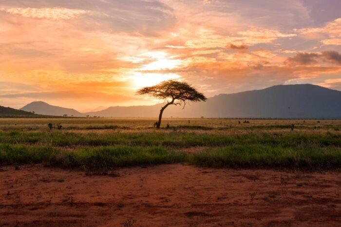 Екзотично сафари в Танзания и почивка в Занзибар