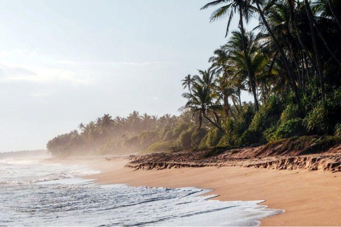Аюрведа почивка в Шри Ланка